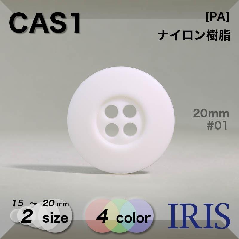 CAS2類似型番CAS1