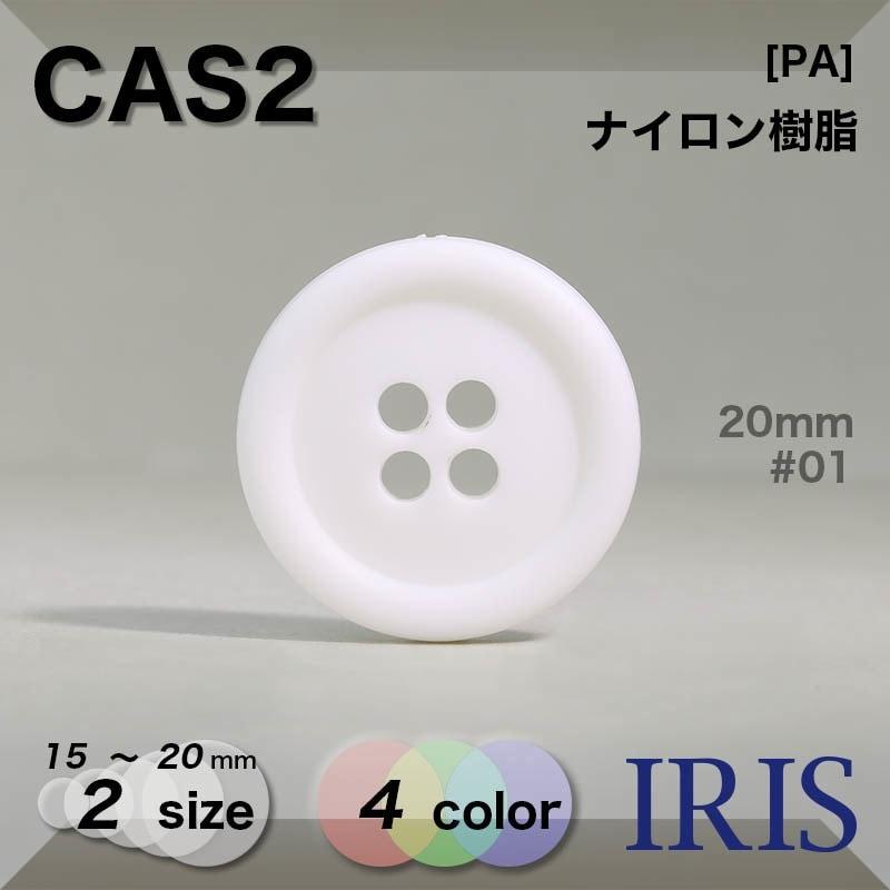 CAS1類似型番CAS2