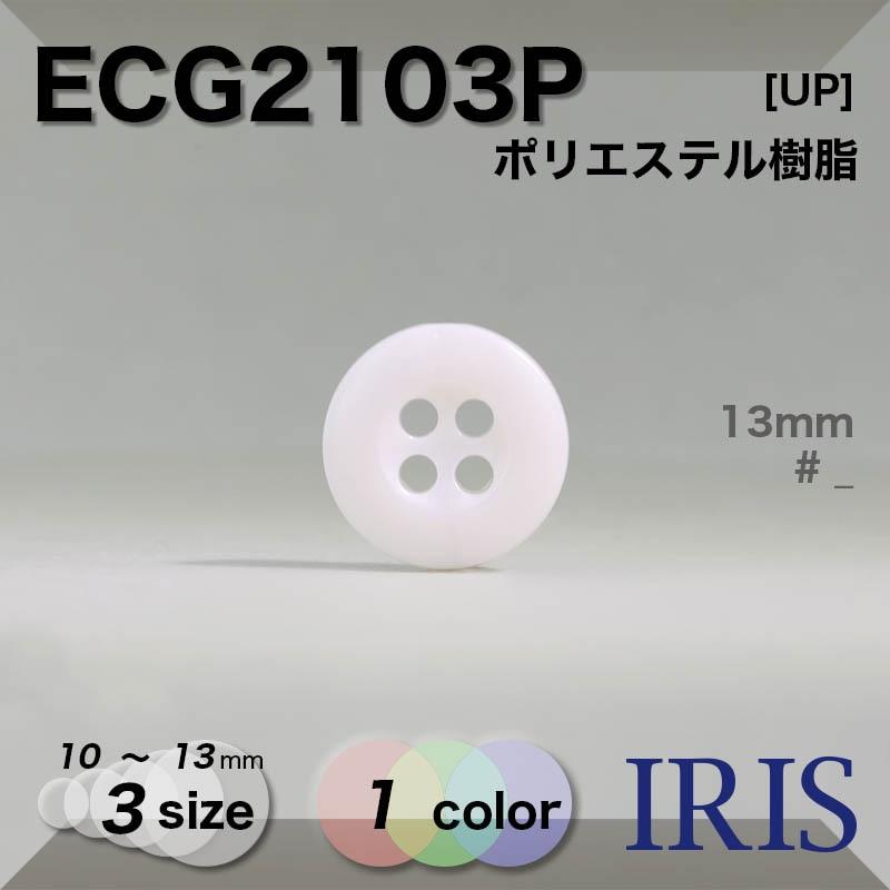 ECG2102P類似型番ECG2103P