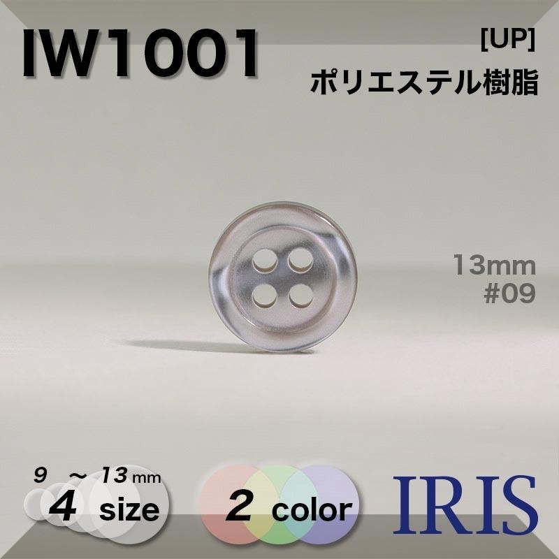 SS1039類似型番IW1001