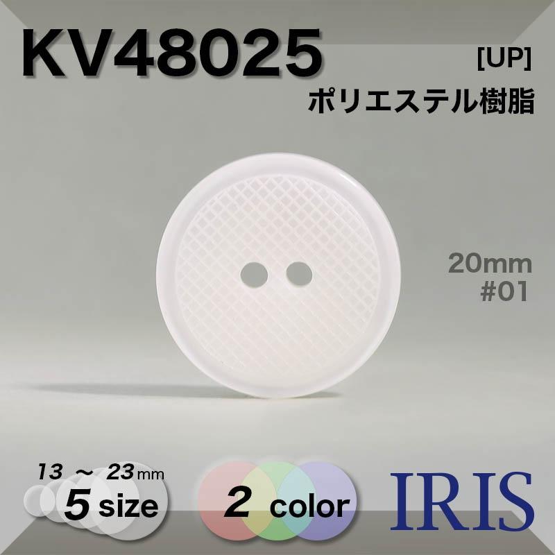YP4E類似型番KV48025