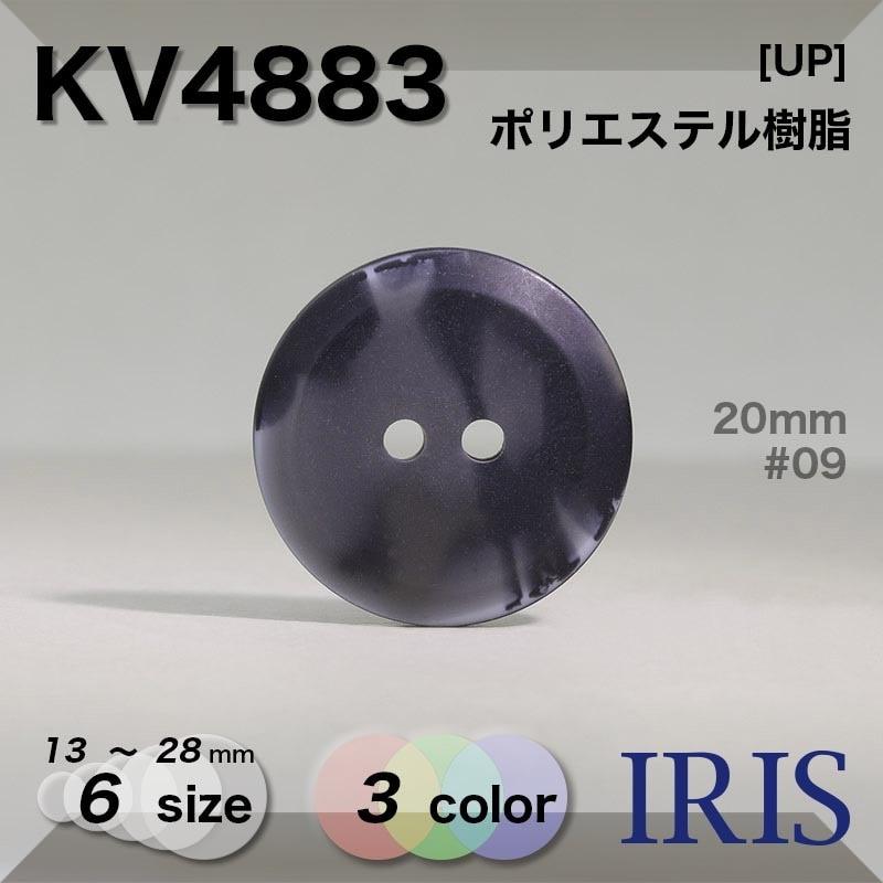 VT1001類似型番KV4883