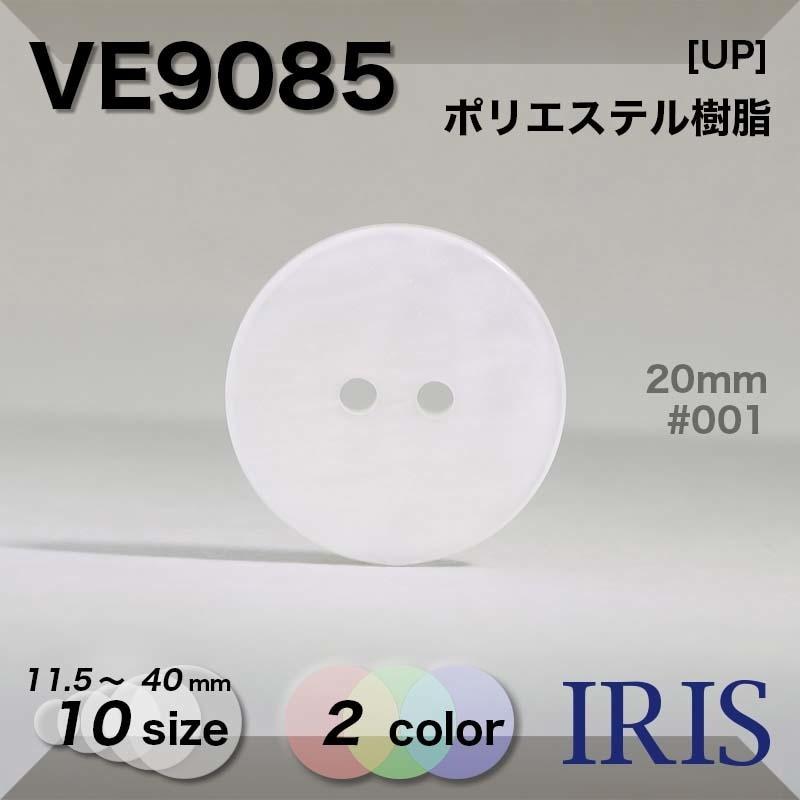 SS1009類似型番VE9085