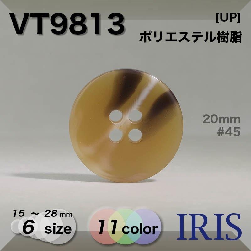 VT13類似型番VT9813