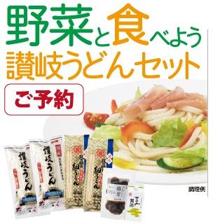 野菜と食べよう讃岐うどんセット_DM-20A
