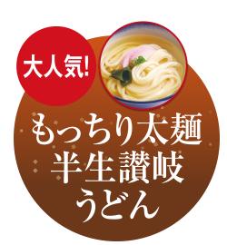 もっちり太麺 半生讃岐うどん