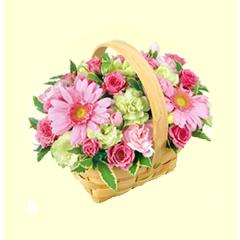 会員様のお誕生日月に抽選でお花をプレゼント!