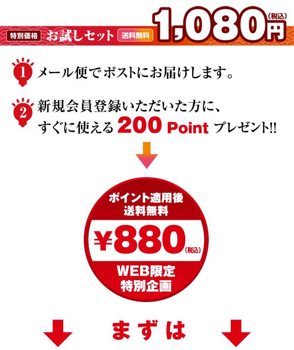 お試しセット180円