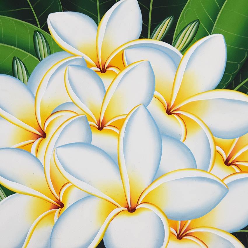 バリアート、白いプルメリアの絵画