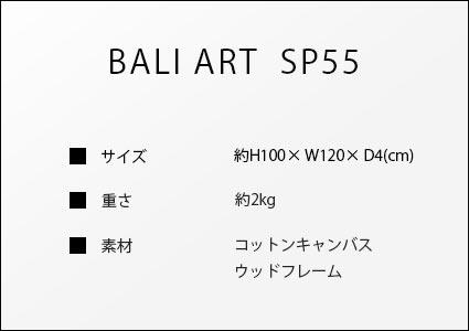 バリアートSP55のサイズ詳細