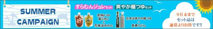 サマーキャンペーン(ティダワールド)