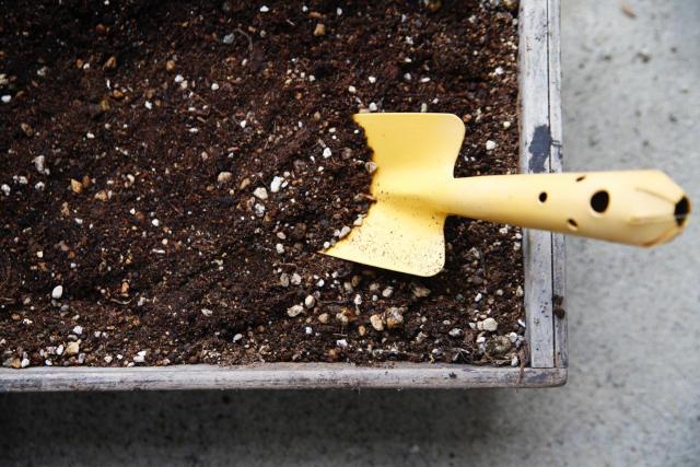プランターの土に刺さったシャベル