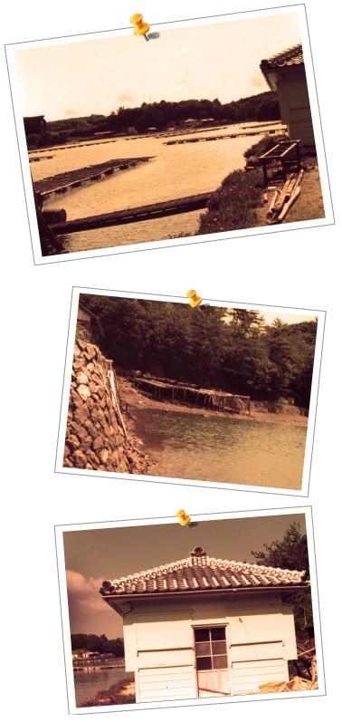 糸川の歴史_伊勢志摩の海