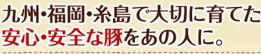 福岡・糸島でまじめに育てた安心・安全な豚をあの人に。