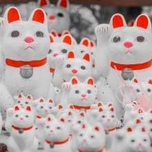 豪徳寺の招き猫が右手をあげている理由
