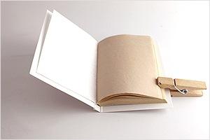 紙おしろい パピアプードル  B. ラシェル(肌色)