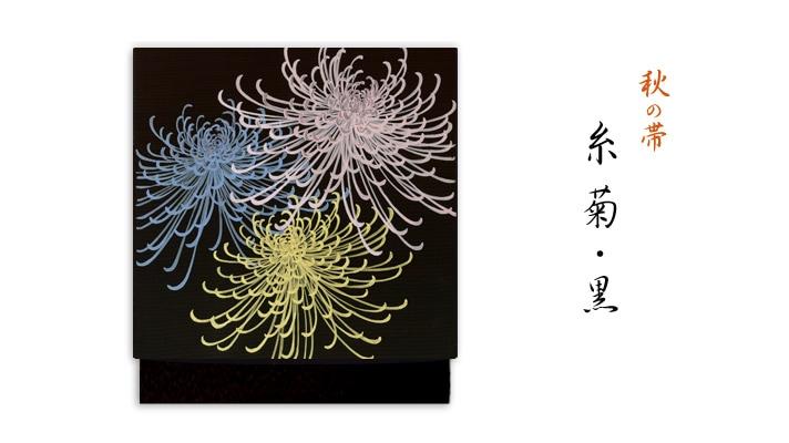 井澤屋 洗える帯 名古屋帯 秋の新塩瀬帯「糸菊」黒地 菊柄