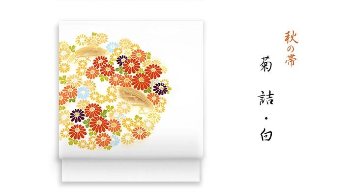洗える帯 名古屋帯 秋の新塩瀬帯「菊詰」白地 菊柄