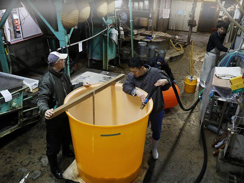 玉櫻酒造 作業2