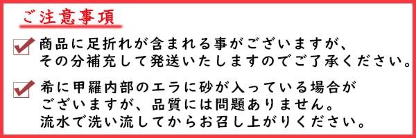 鳥取県産紅ズワイガニ
