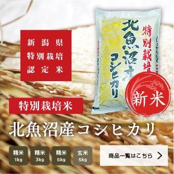 特別栽培米 北魚沼産コシヒカリ