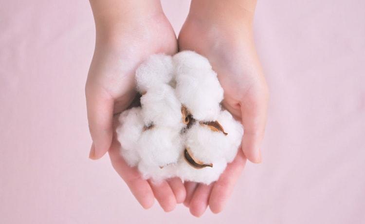 布ナプキンで使われるコットン
