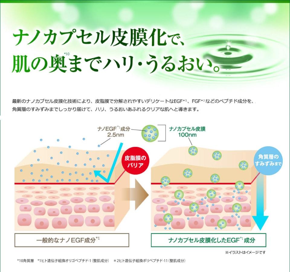 EGFをリポソーム化することで肌奥に素早く届けます
