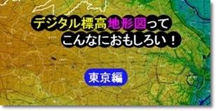1:50,000デジタル標高地形図 東京