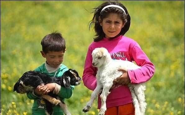 子供たちは動物が大好き