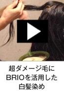 BRIOを使用したカラー