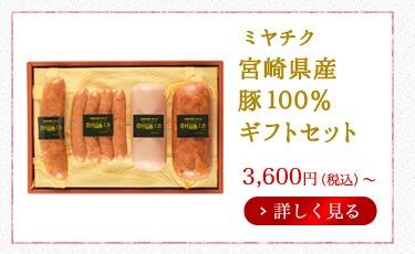 ミヤチク 宮崎県産豚100%ギフトセット