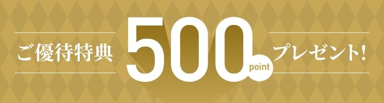 ご優待特典 500pointプレゼント
