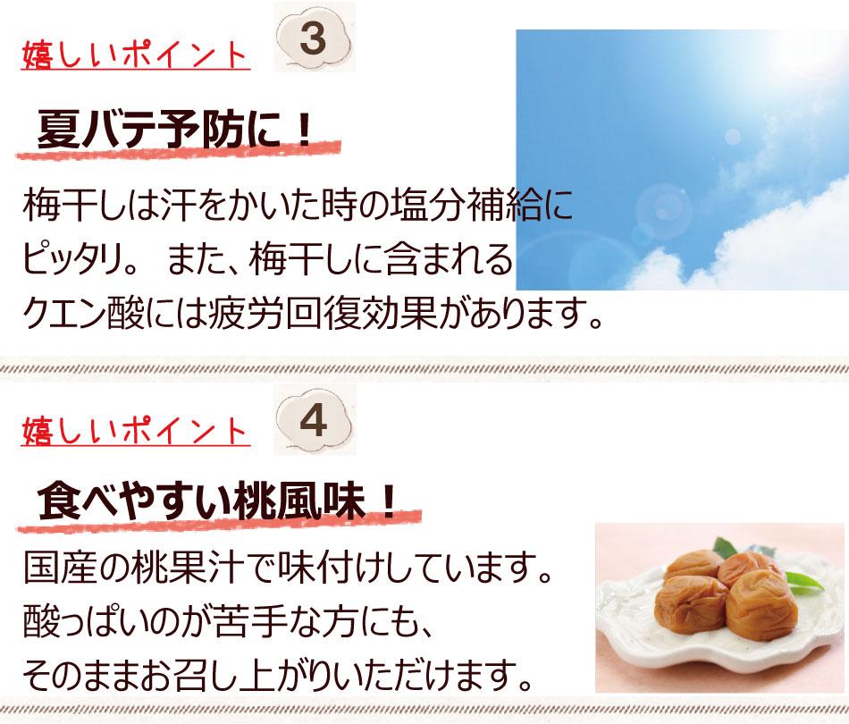 夏バテ予防桃果汁を使い減塩で食べやすい