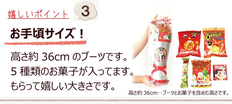 5種類のお菓子 クリスマスブーツ