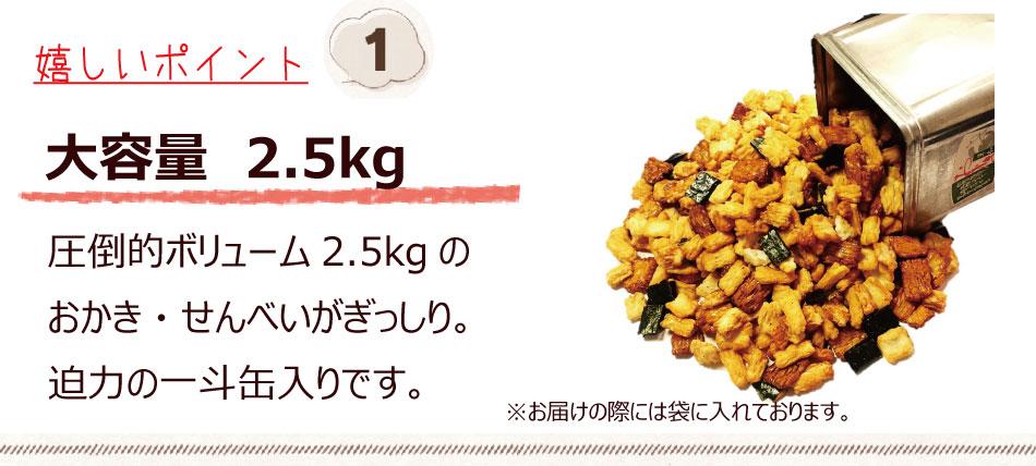 大容量 2.5kg