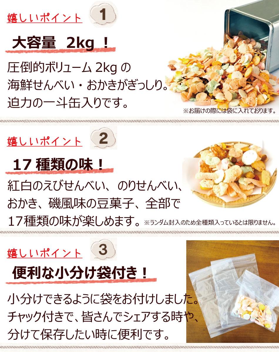 ボリューム満点17種類の味小分け袋付き