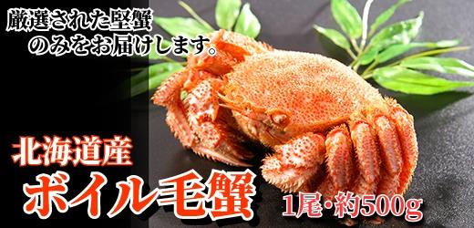 北海道毛蟹