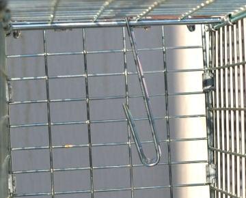イタチ捕獲器 アニマルキャッチャーS型 強度の高い日本製