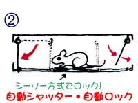 ネズミ捕獲器 チュートルマン