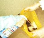 除菌洗浄剤 ジアショット 500mlスプレー式 次亜塩素酸ナトリウム製剤 医療施設用除菌洗浄剤