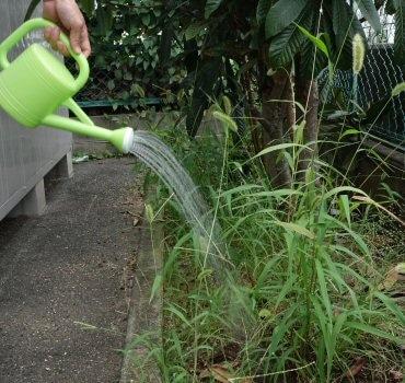 三喜工業有限会社 植物性除草剤