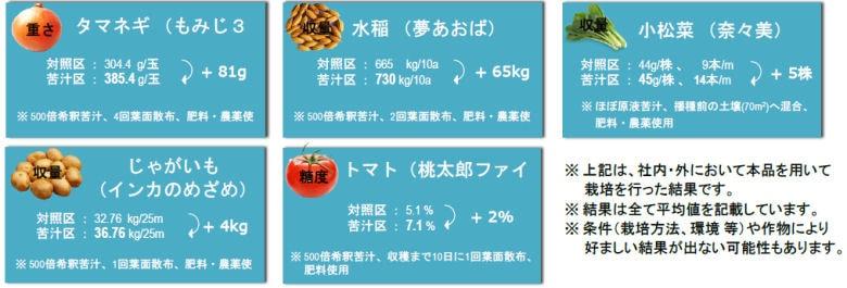 株式会社日本海水 清澄苦汁(せいちょうくじゅう)
