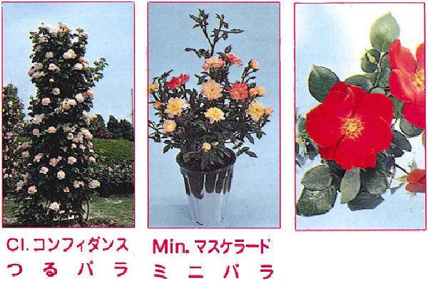 バラ専用肥料(400g×40箱/ケース)