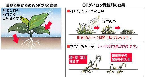 GFダイロン微粒剤