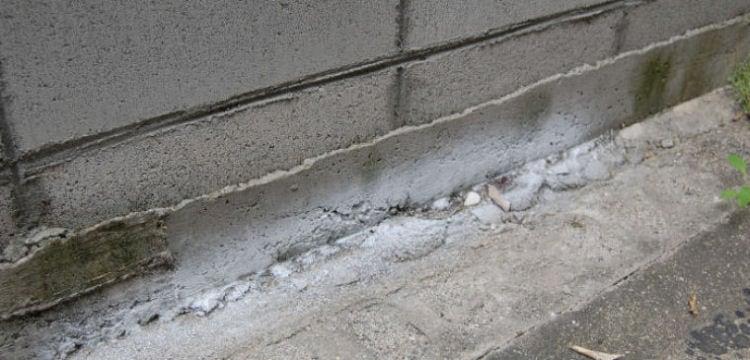 ムカデ駆除 ヤスデ退治 ゲジ駆除 アリの侵入防止に スプレーできる粉末状殺虫剤 パウダースルー