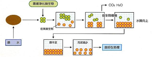 活性汚泥処理における利用