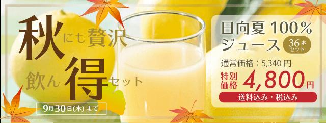 秋得セット 日向夏100%ジュース 特別価格4800円
