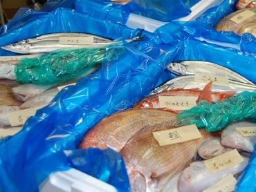 鮮魚通販|角上お魚大漁セット