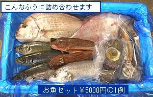 鮮魚通販|お魚セット詰め合わせの例