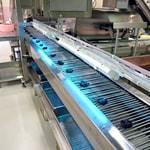 製造ラインは衛生面を考慮し、『殺菌灯』を設置。衛生管理された製造ラインで製品作りを行っています。